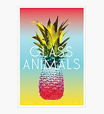 Glass Animals Tour Poster Photographic Print