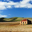 Homestead, Burra SA by Tim Coleman