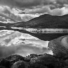 Upper Yarra Reservoir by Christine Wilson