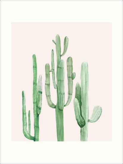 Modische Kaktus-rosa und grüne Wüsten-Kaktus-Illustration von DesertDecor