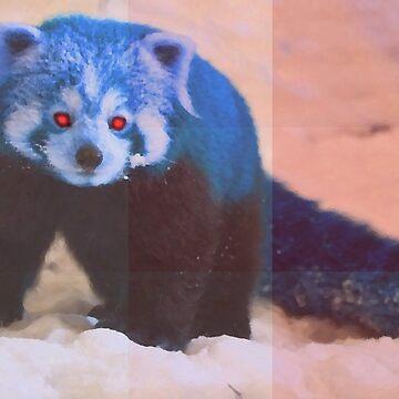 (red) panda  by GeorgeSears