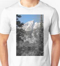 Teton Mountains Unisex T-Shirt