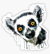 Lemur Head  Sticker