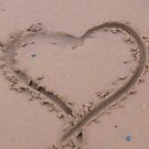 Heart by Wrigglefish