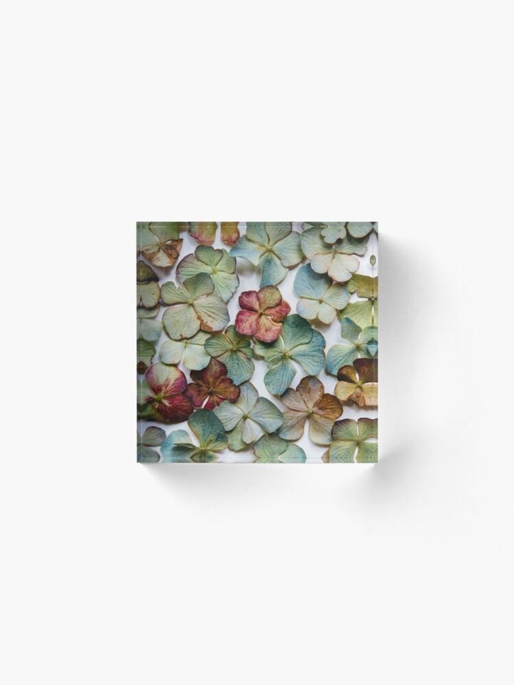Alternate view of Hydrangea Petals no. 2 Acrylic Block