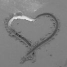 wet heart by Wrigglefish