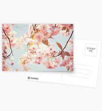 Cherry dream Postcards