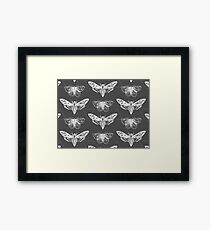 Geometric Moths - inverted Framed Print