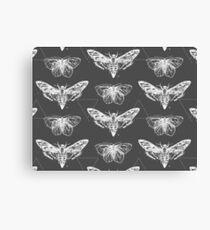 Geometric Moths - inverted Canvas Print
