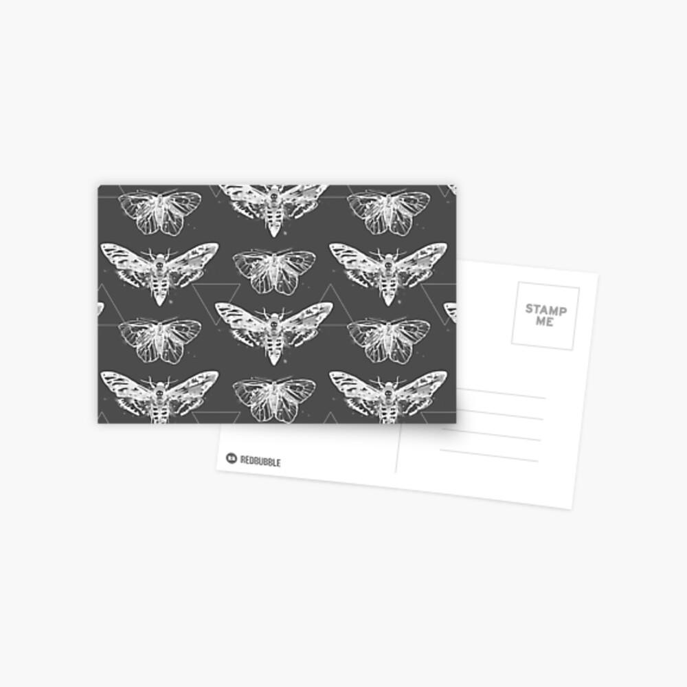 Geometric Moths - inverted Postcard
