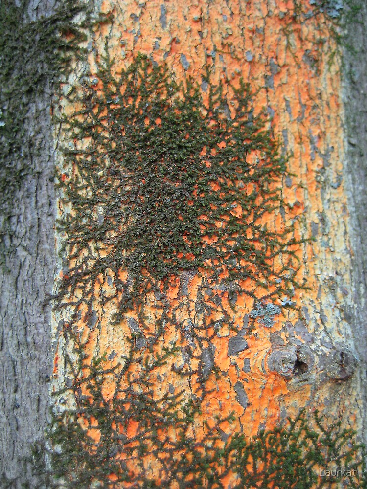 ballground bark iii by Laurkat