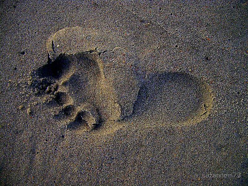 Foot Print on the Sands of Time by suzannem73
