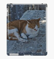 Ephesus, Turkey (11) iPad Case/Skin