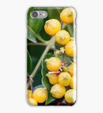 Yellow berries in foliage closeup outdoor background iPhone Case/Skin