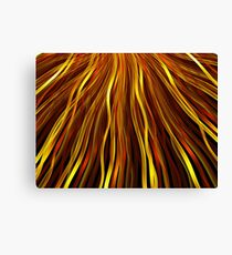 Flowing Strands  Canvas Print