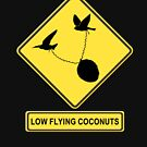 Low Flying Coconuts  by Karen Amato