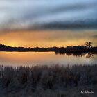 Sunrise on a Frosty Marsh by RC deWinter