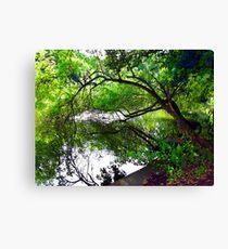 Moseley Park01 Canvas Print
