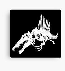 Dino Skeleton (Spinosaurus) Print Canvas Print