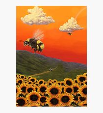 Flower Boy Poster Photographic Print