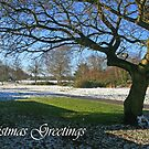 Christmas Greetings by RedHillDigital