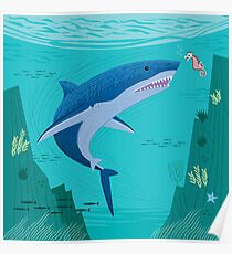 The Shark and The Seahorse Poster