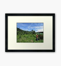 Remote inhabitant in the middle of the Borneo jungle, Malaysia Framed Print