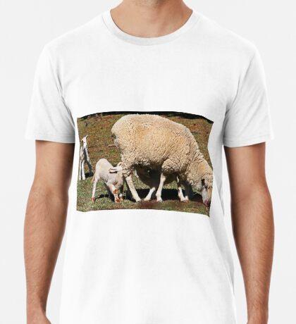 Mittagessenszeit Premium T-Shirt