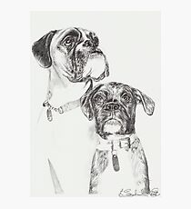 Two Boxers Photographic Print