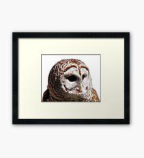 Barred Owl #1 Framed Print