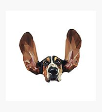 Basset Hound Low Poly Photographic Print