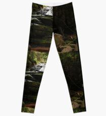 Leura Cascades Leggings