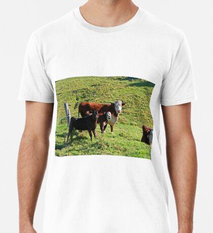 Dich anschauen! Premium T-Shirt