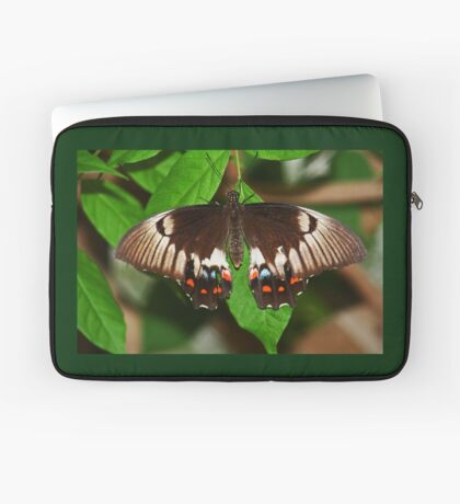 Schmetterling Laptoptasche