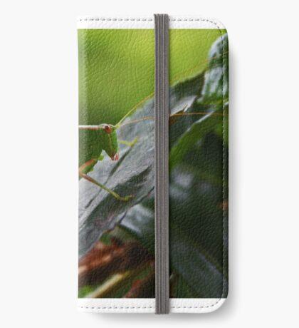 Gum Leaf Katydid (Torbia viridissima) iPhone Flip-Case