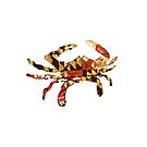 Maryland State Crab - State Pallets by Statepallets