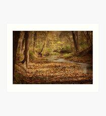 Creek in the Fall Art Print
