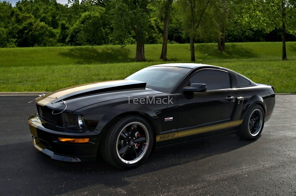 2007 Mustang Shelby GT-500 by TeeMack