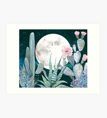 Cactus Nights Pretty Pink and Blue Desert Stars Cacti Illustration Art Print