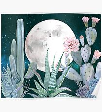Cactus Nights Pretty Pink and Blue Desert Stars Cacti Illustration Poster
