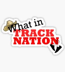 What in Track Nation Sticker