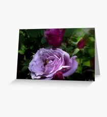 Bee on Roses Greeting Card