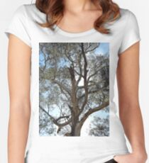 Backlit Yellow Gum Women's Fitted Scoop T-Shirt