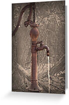 Antique Water Pump by Sherry Hallemeier