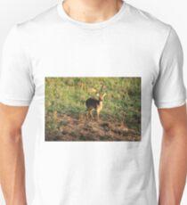 Masai Mara Dikdik Deer T-Shirt