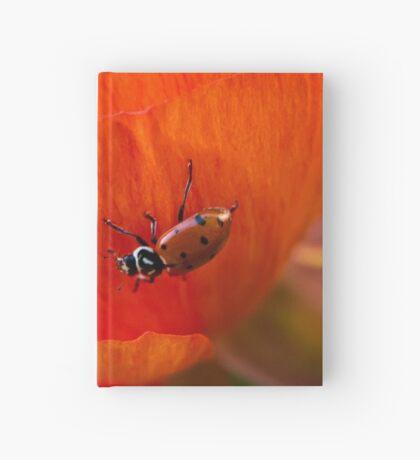 Es ist eine Marienkäferwelt Notizbuch