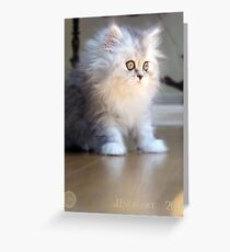 Paris Looking Out Greeting Card