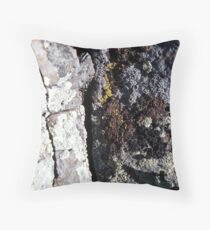 Ravine? Throw Pillow