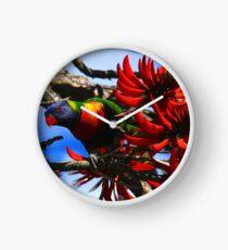 Rainbow Lorikeet in Flametree Clock