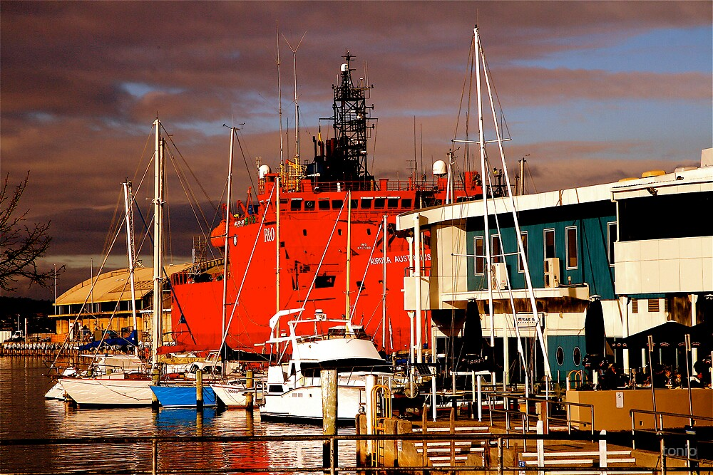 harbour by tonio